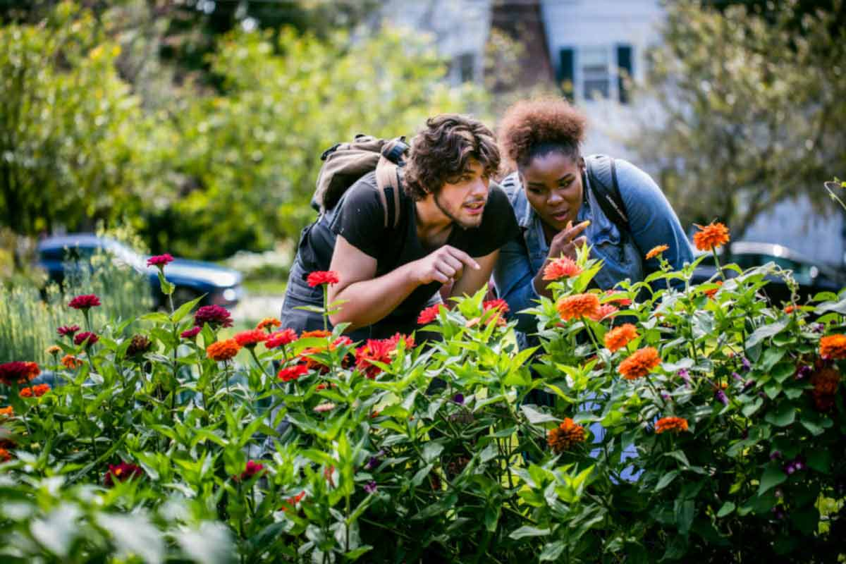 Two students talk with each other as they examine flowers along the Pollinator Path.