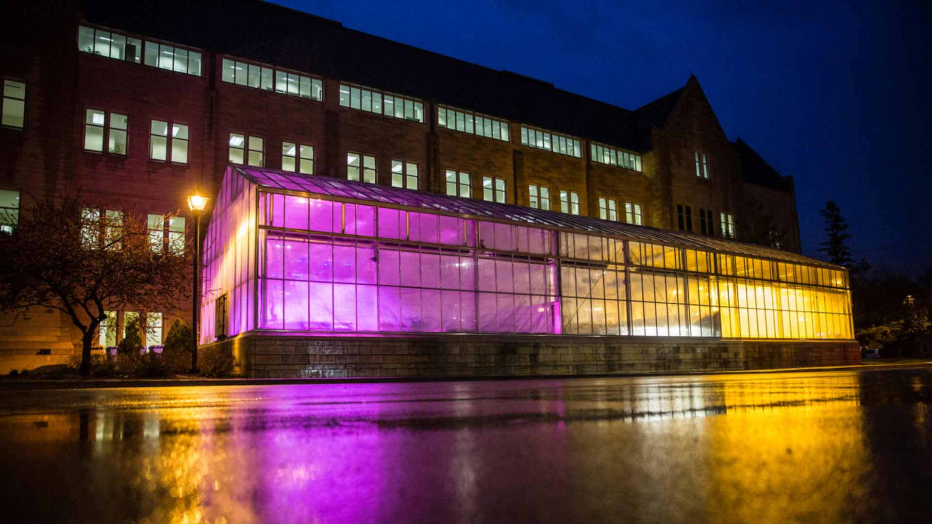 The Biology Greenhouse outside of Owens Science Hall on a rainy night.