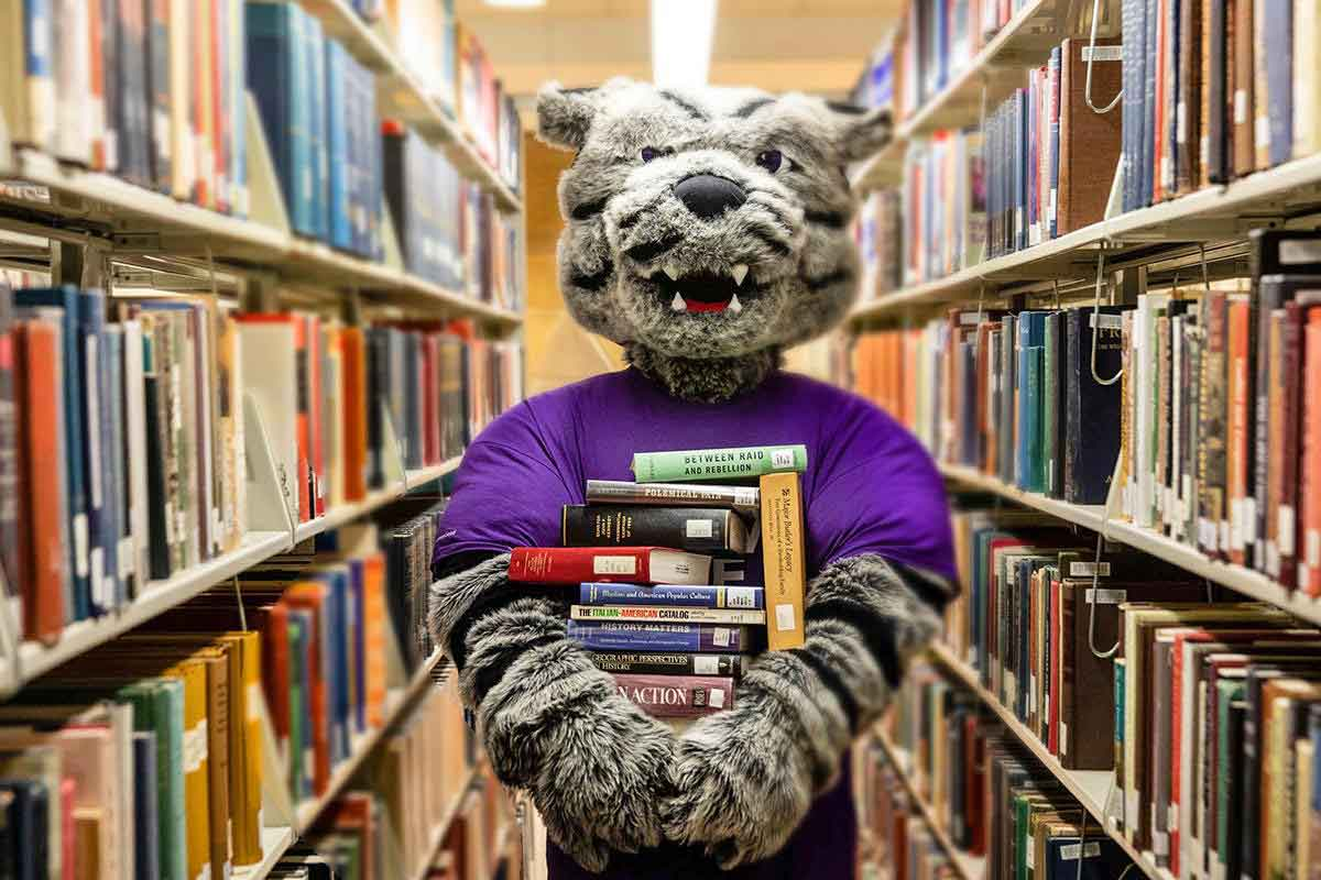 The St. Thomas mascot Tommie holds a stack of books in a library.